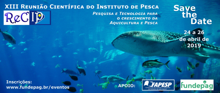 XIII-pesca.png